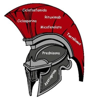 gladiator-inmuno