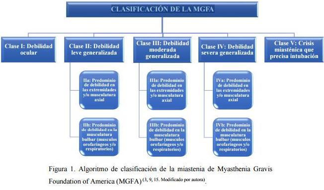 clasif-mgfa