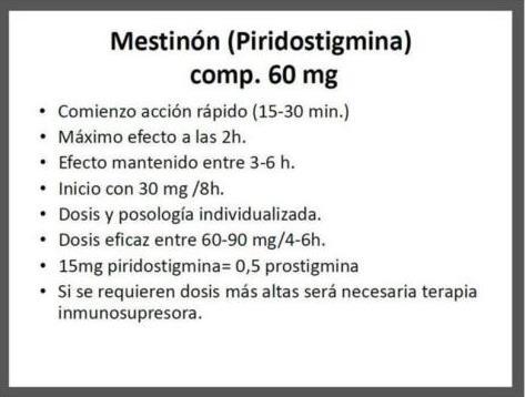 preambulo1